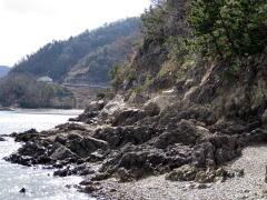 鏡浦天然記念物の地層