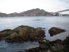 大浜崎灯台下の磯